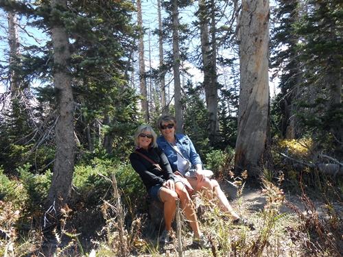 Cedar Breaks selfie