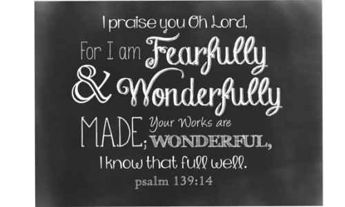 Fearfully and wonderfully made 2
