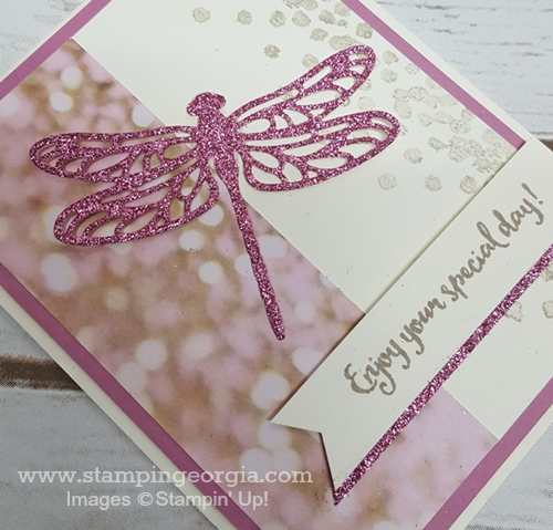 Sweet Sugarplum Glimmer Dragonfly close up