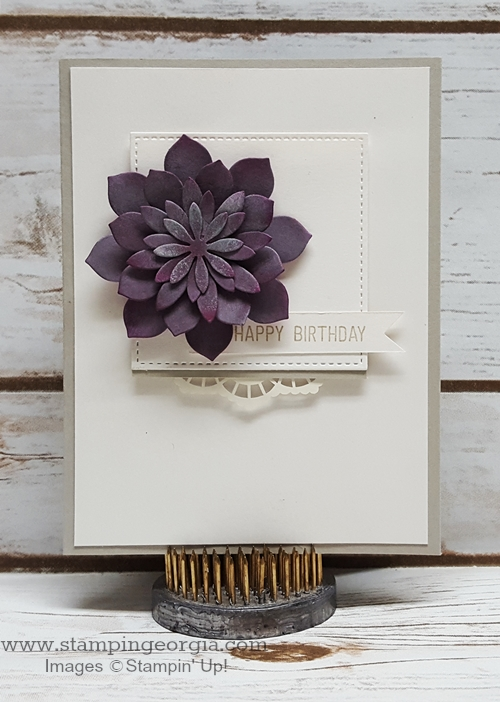Succulent Happy Birthday Card