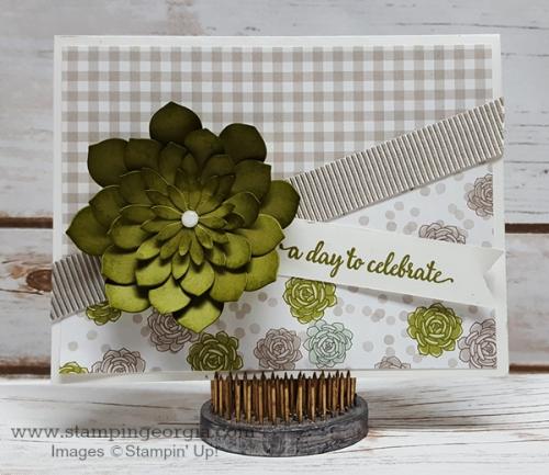 Succulent Garden Card Old Olive Front