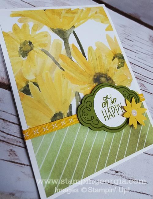 Delightful Daisy Daffodil Delight